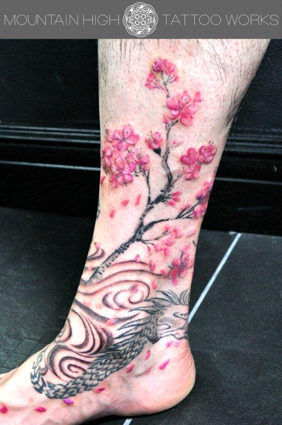 桜と龍3のコピー